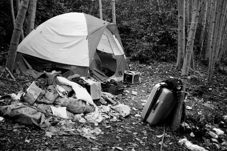 13_Camp with suitcase.jpg