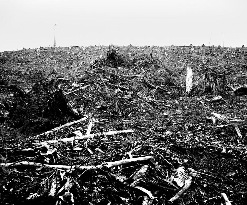 Desastres des Foret 4.jpg
