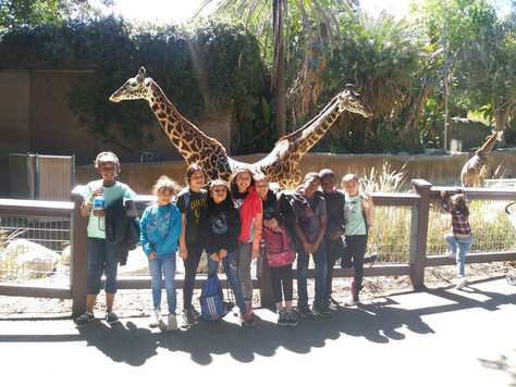 Los Angeles Zoo 2018/2019