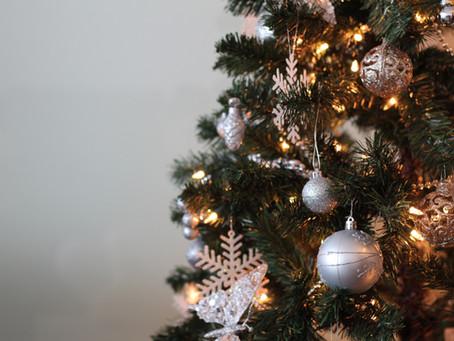 Comment bien choisir son sapin de Noël !