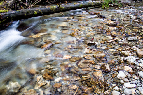 Whispy rapids of a mountain creek