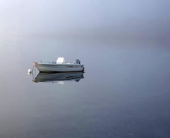 'Lonesome' by Anne McDonnell, Ballymoney Amateur Photographic Club