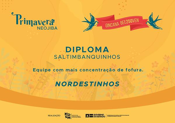 Diploma Saltimbanquinhos-01 (1).png