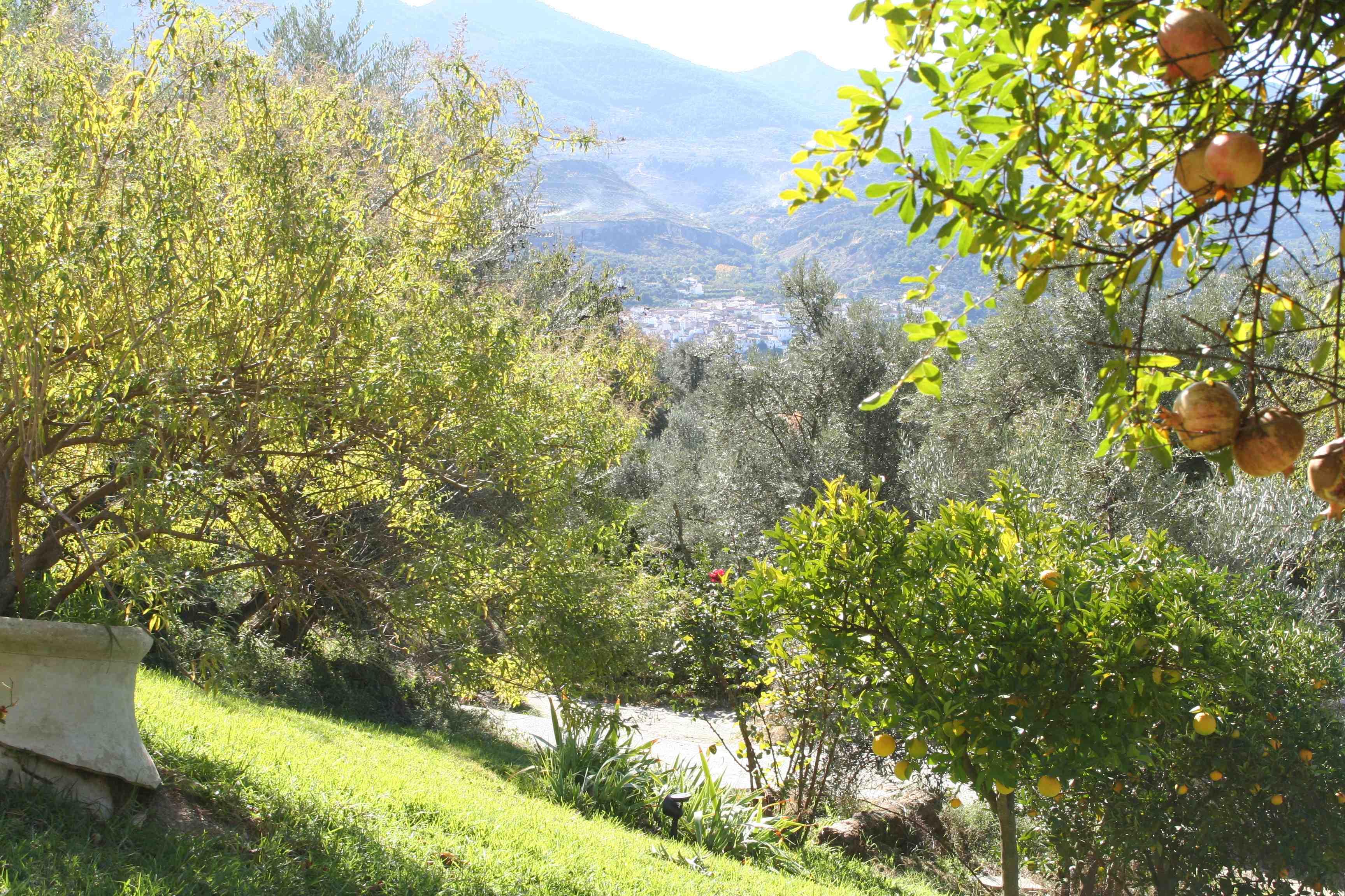 Le village vue de la Terasse.jpg