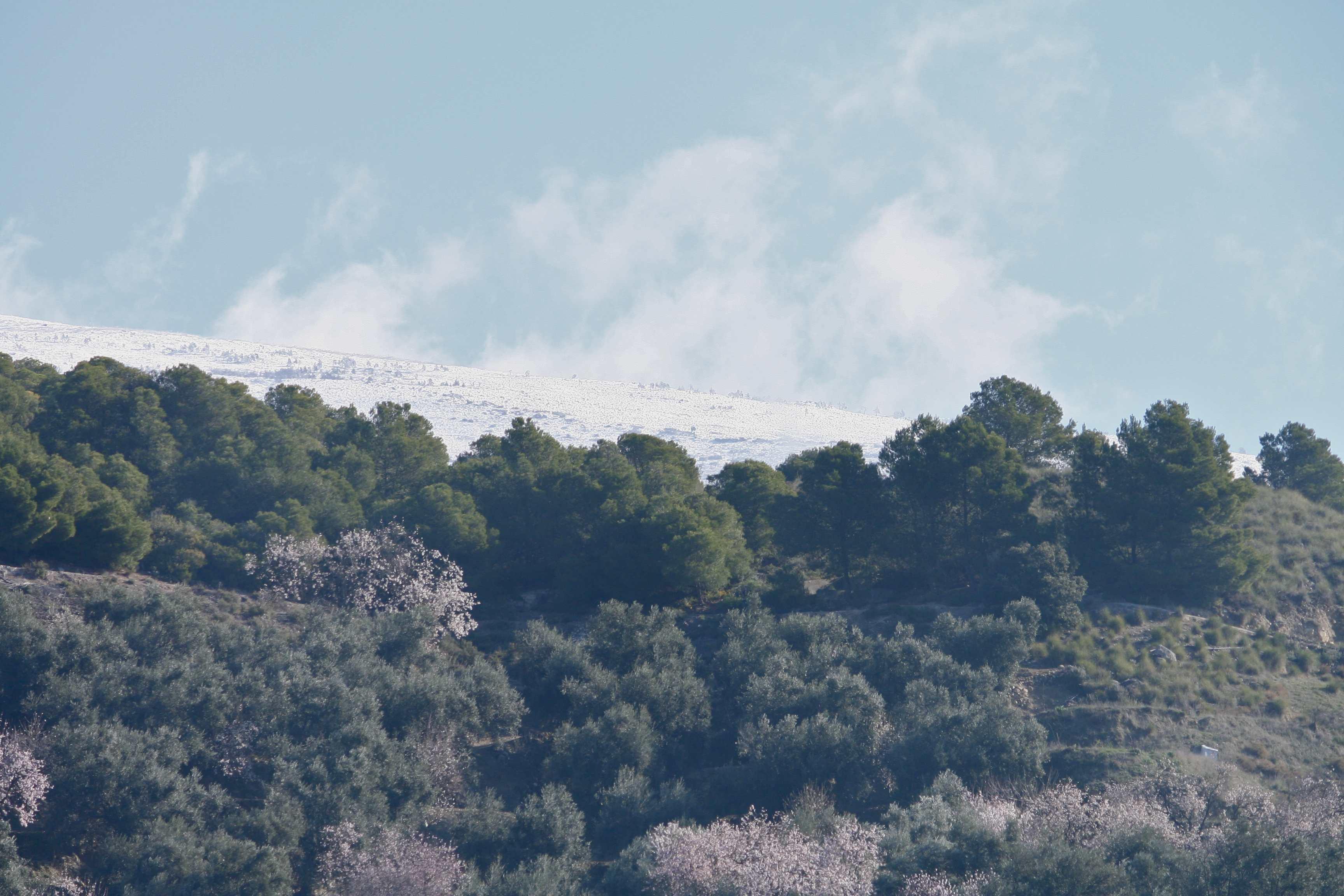 La Sierra Nevada juste à Côté.jpg