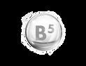 B5 ויטמין