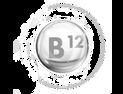 B12 ויטמין