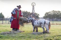 Texas Western Santa