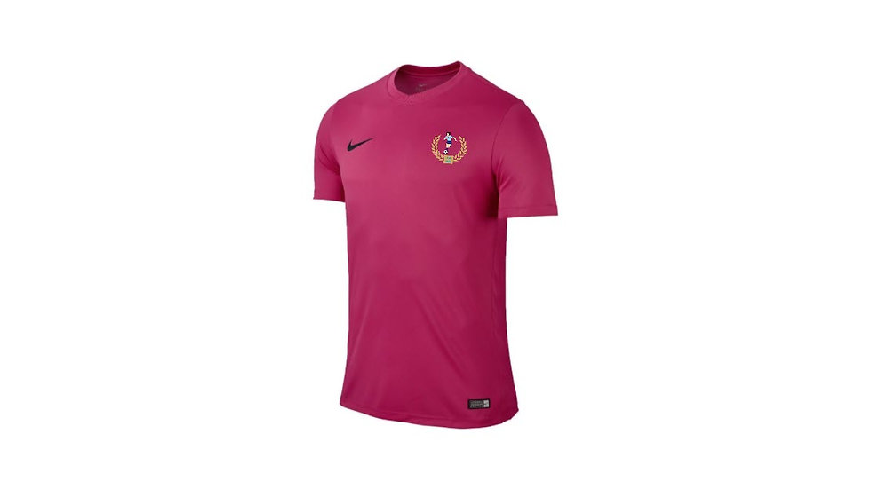 Nike Park VI Training Shirt (Short Sleeve)