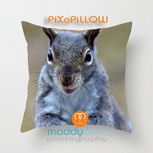 More nuts pelase 16204