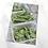 Thumbnail: Green beans in baskets