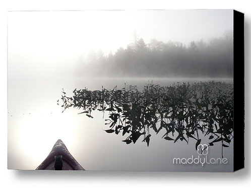Wart art / Mystical Journey