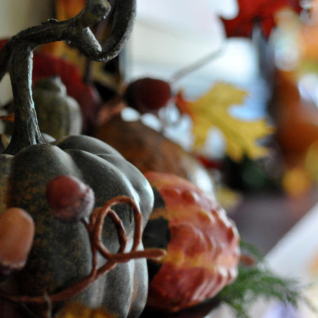 Photos for Wix Holiday  by Maddylane (68