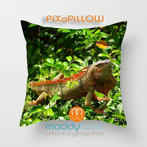 Orange Iguana 16207