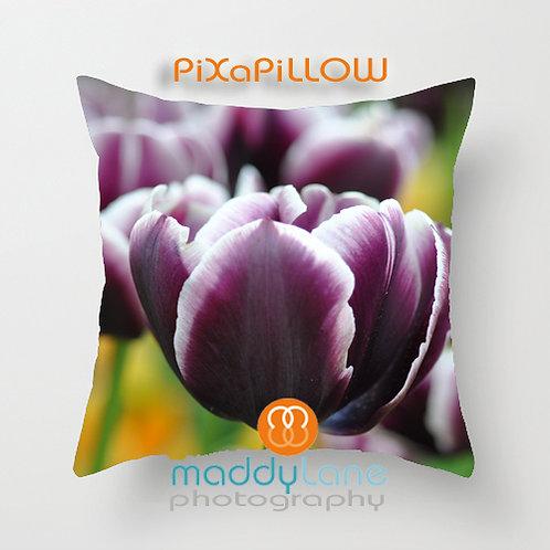 Purple Tulips 16203