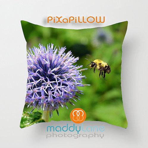 Bee-utiful day 16001