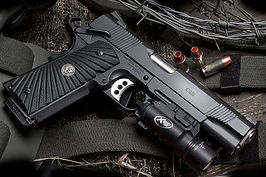 handgun 2.jpg