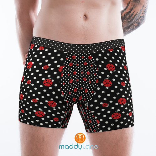8010 Ladybugs / Men's Boxer Briefs