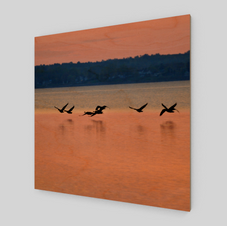 Sunset Flight-wood-print-front.png