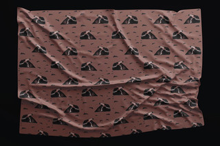 Anteater fabric design 2019