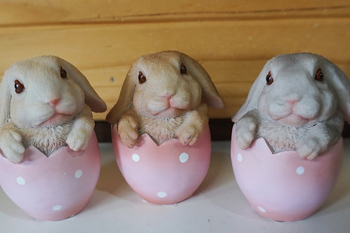 Bunnies in an Egg