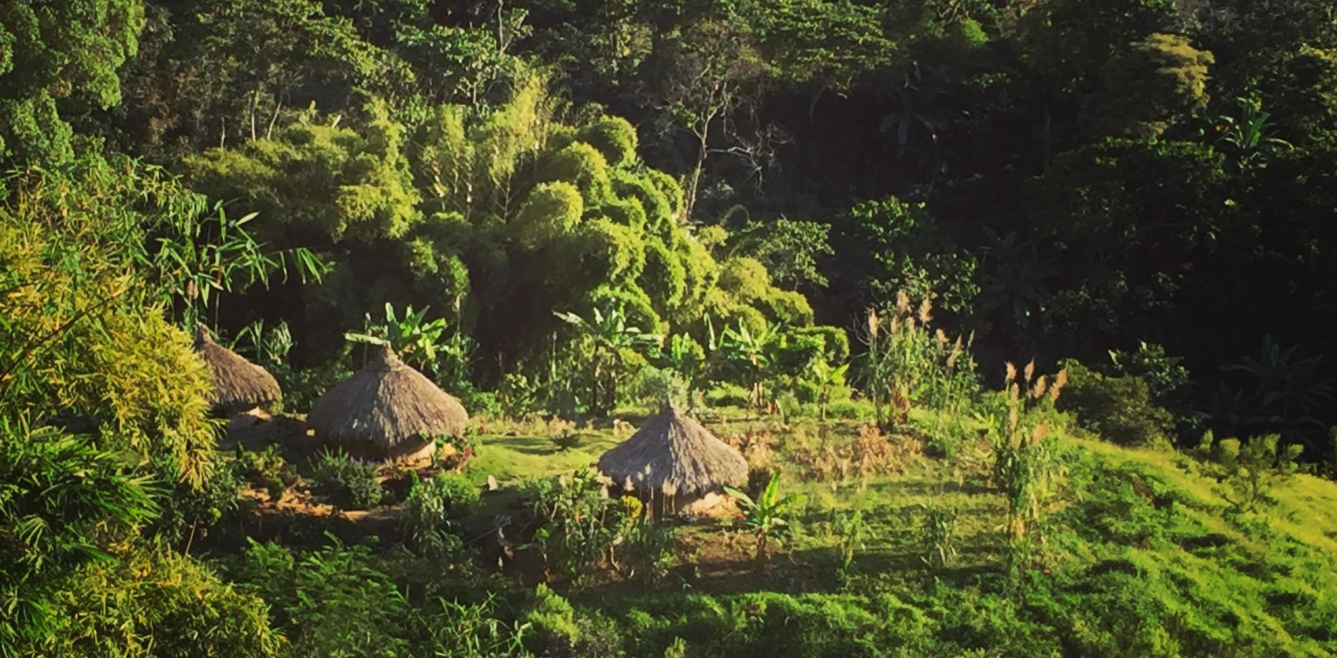 Wiwa Indians