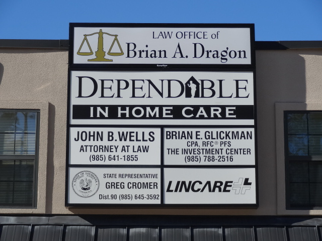 Brian Dragon Plexiglas Panel
