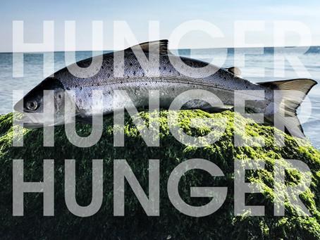 Wenn der große Hunger kommt...