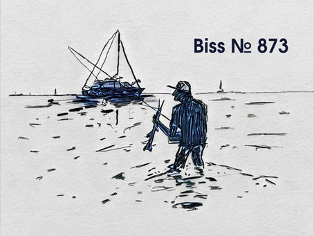Biss № 873