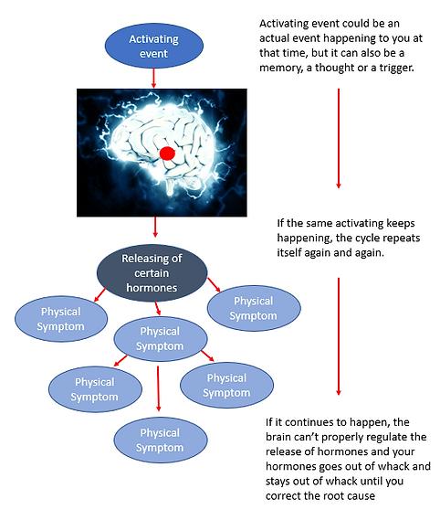 Activating event Releasing hormones caus