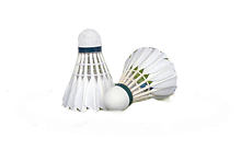 shuttlecock-2379720_1920_edited.png