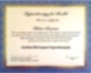 IBS Certificate.PNG