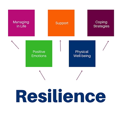 Resilience Programme