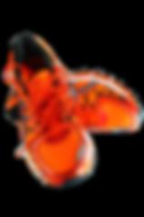 sneakers-1024979_1920_edited.png