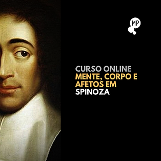 spinozacartaz3.png