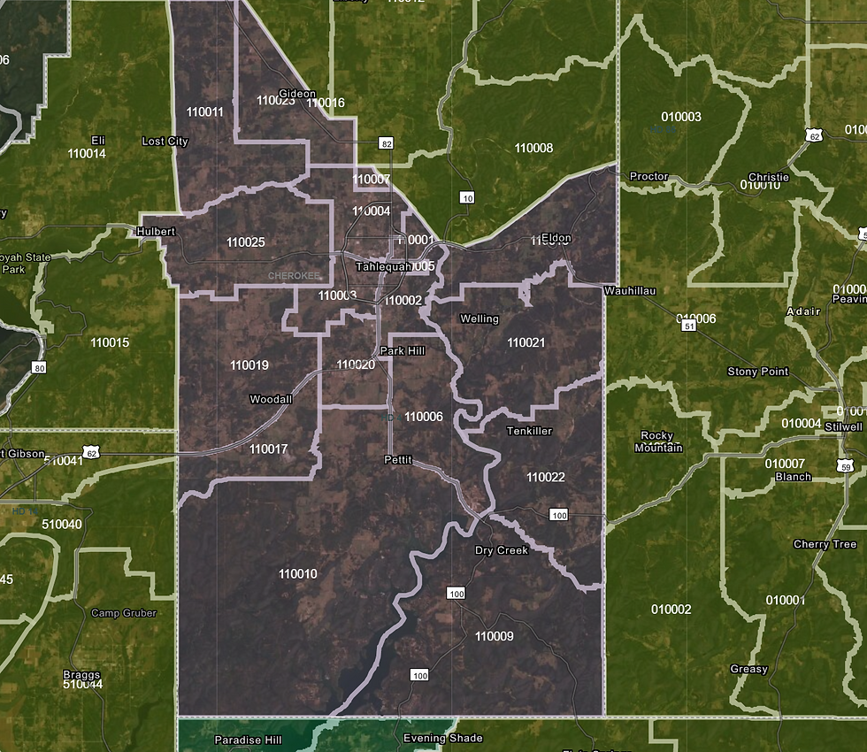 House District 4.PNG