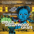 Najah and Quraysh Interview with The Brown Bookshelf about OPAL'S GREENWOOD OASIS