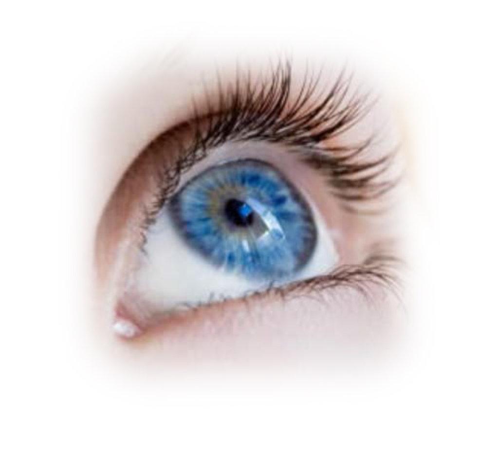 Acupuncture - Vision