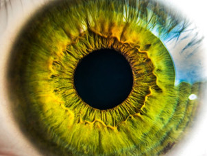 Acupuncture for Degenerative Eye Diseases