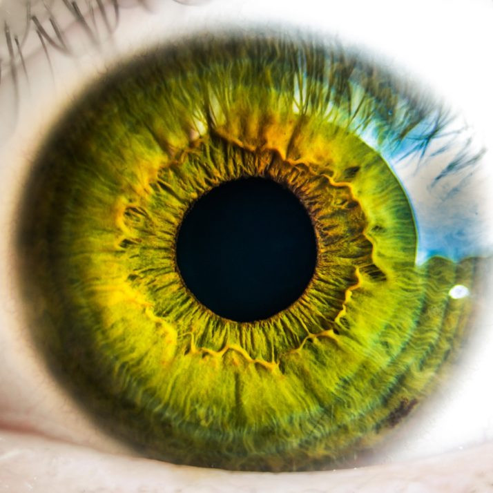 Acupuncture for Macular Degeneration