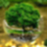 environmental-protection-32692.jpeg.jpg