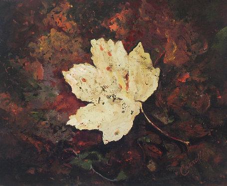Abstract Autumn Forest Floor