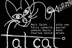 Fat Cat noms v2