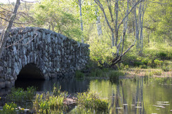 Stonebridge 1