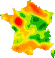 France épidémie2.jpg