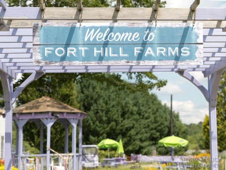 Fort Hill Farms