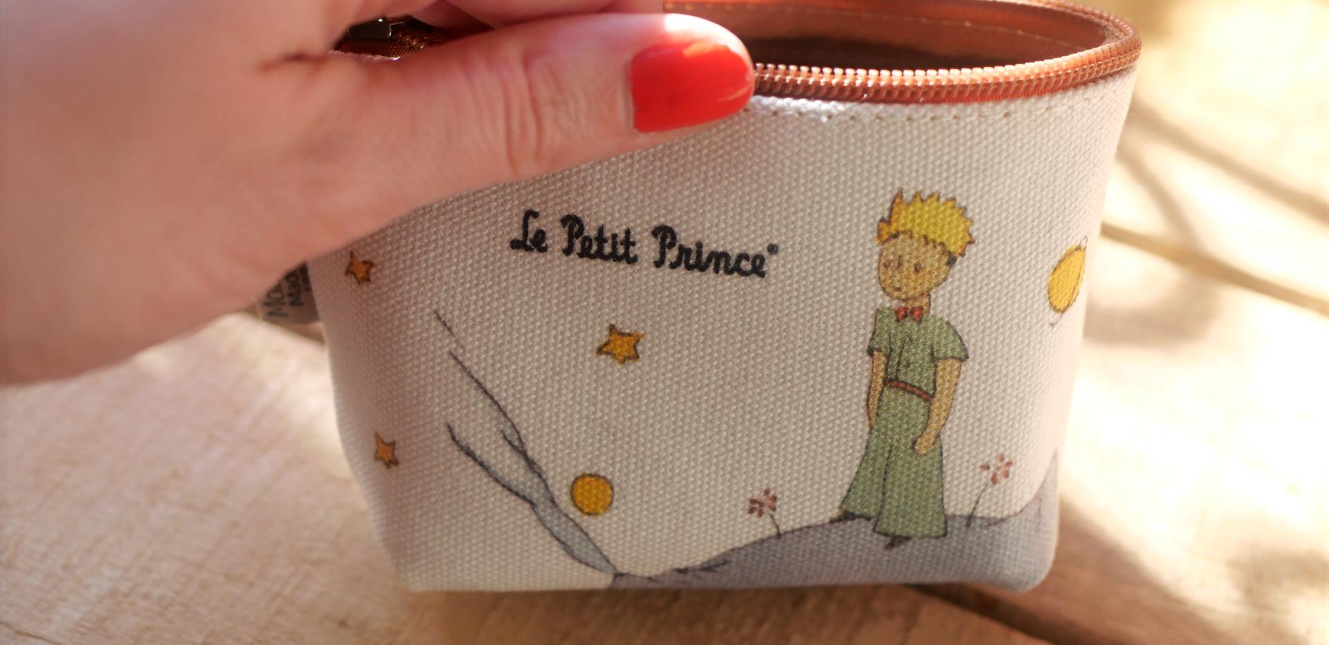 Porte-monnaie Le Petit Prince sur sa planète (ref 419PL)
