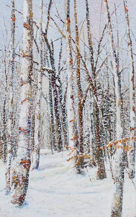 Gentle Snow  48x30