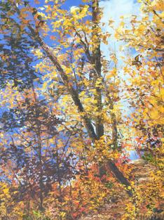 Walking Through Autumn