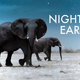 night on earth .jpg